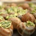 Escargot de Bourgogne, montre-moi tes cornes