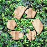 Quels conseils donner à une entreprise pour devenir plus écologique ?