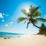 Les avantages d'investir en île Maurice