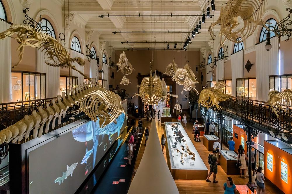 musee oceanographique monaco